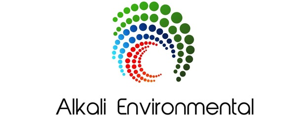 Alkali Environmental Stack Emissions Monitoring
